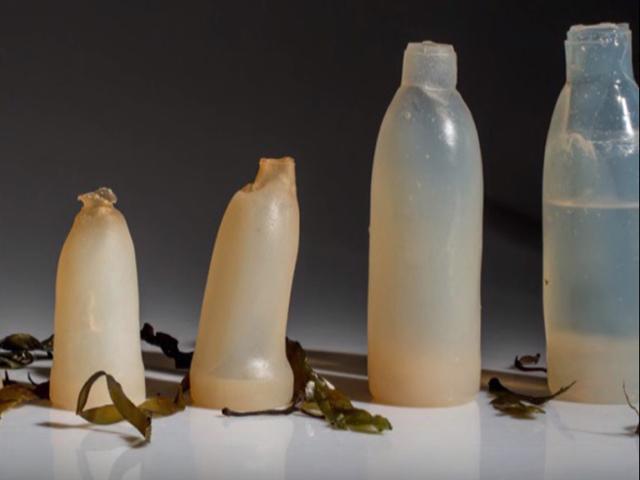 Inovacije: Vodu popiješ, flašu pojedeš!