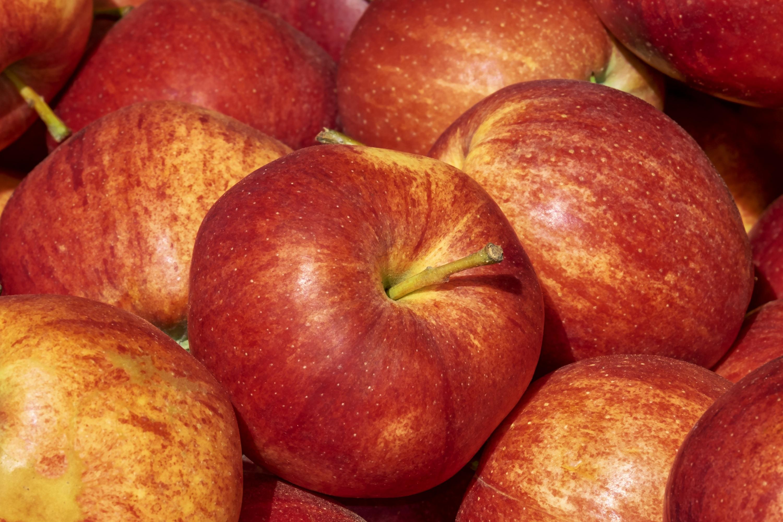Šta znači izraz jabuka razdora?