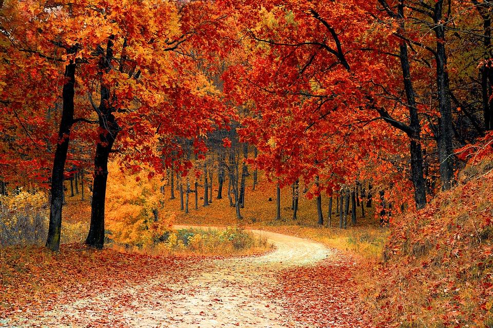 Da li nas jesen inspiriše?