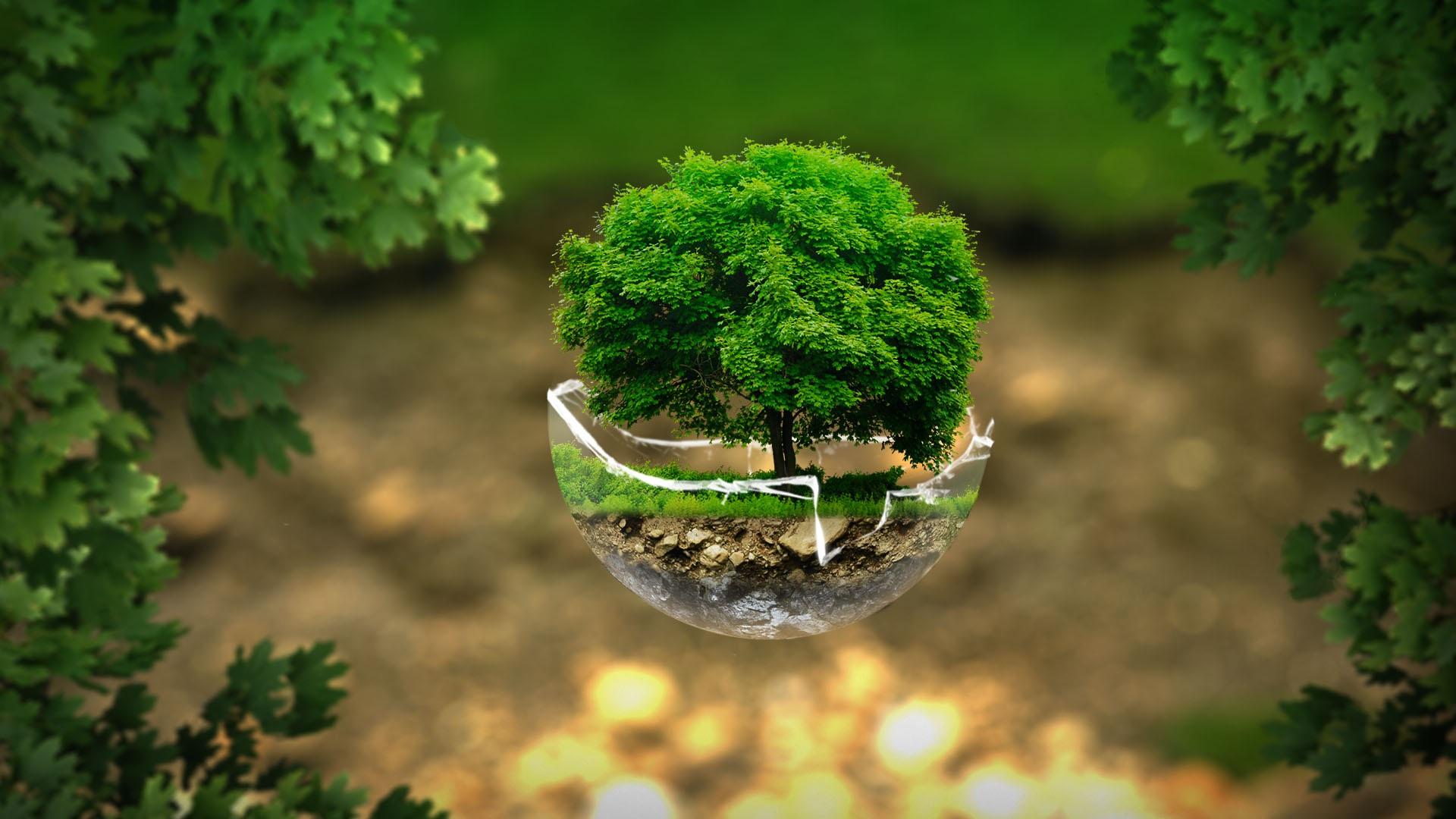 10. Green fest: Budućnost je na zemlji!