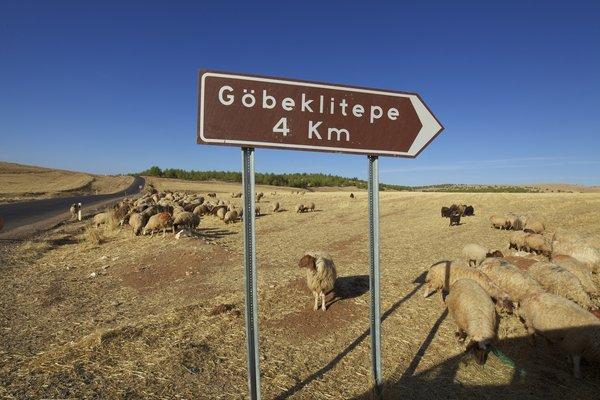 Gobekli Tepe: najstariji hram na svetu