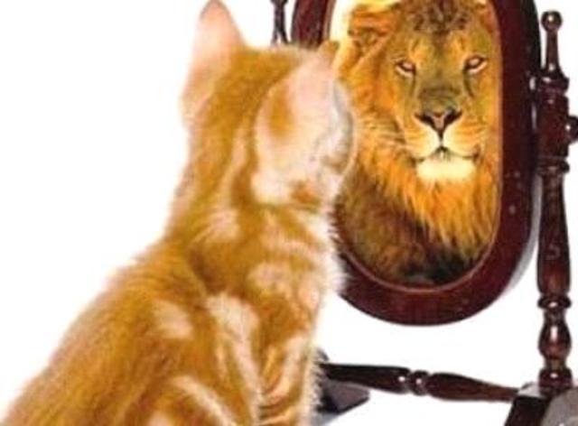 Koliko je samosvesnost važna?