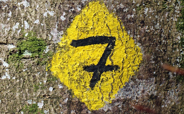 7 važnih obeležja uspešnog brenda